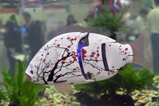 ربات ماهی نما